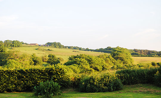 View of Frogmore Farm, holiday cottages in West Dorset